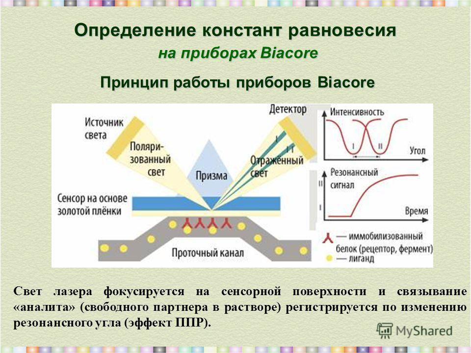 Определение констант равновесия на приборах Biacore Принцип работы приборов Biacore Свет лазера фокусируется на сенсорной поверхности и связывание «аналита» (свободного партнера в растворе) регистрируется по изменению резонансного угла (эффект ППР).