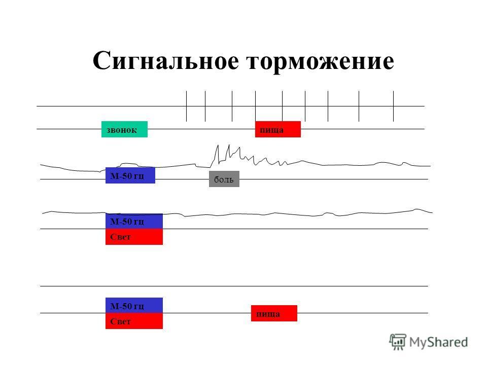 Сигнальное торможение звонокпища М-50 гц боль М-50 гц Свет М-50 гц Свет пища
