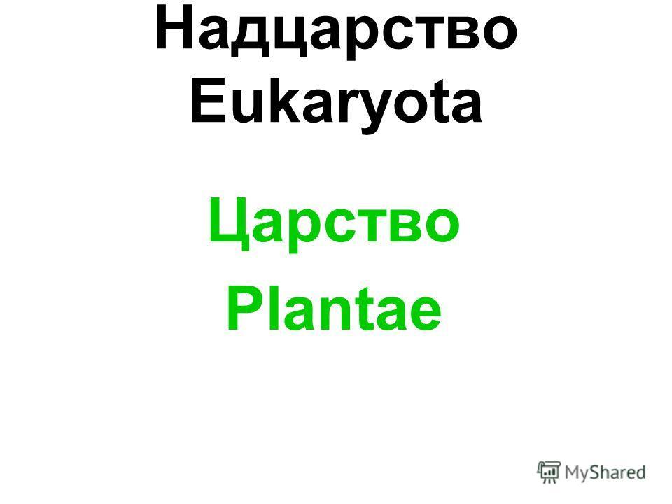 Надцарство Eukaryota Царство Plantae