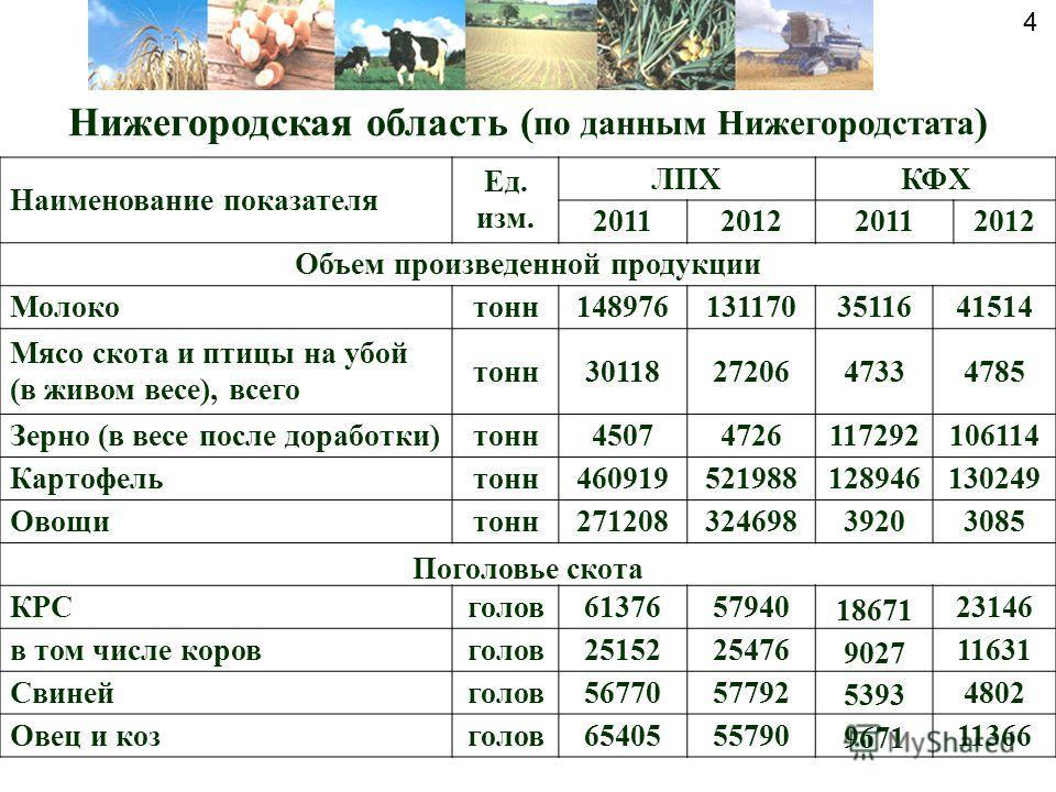 Нижегородская область ( по данным Нижегородстата ) Наименование показателя Ед. изм. ЛПХКФХ 2011201220112012 Объем произведенной продукции Молокотонн1489761311703511641514 Мясо скота и птицы на убой (в живом весе), всего тонн301182720647334785 Зерно (
