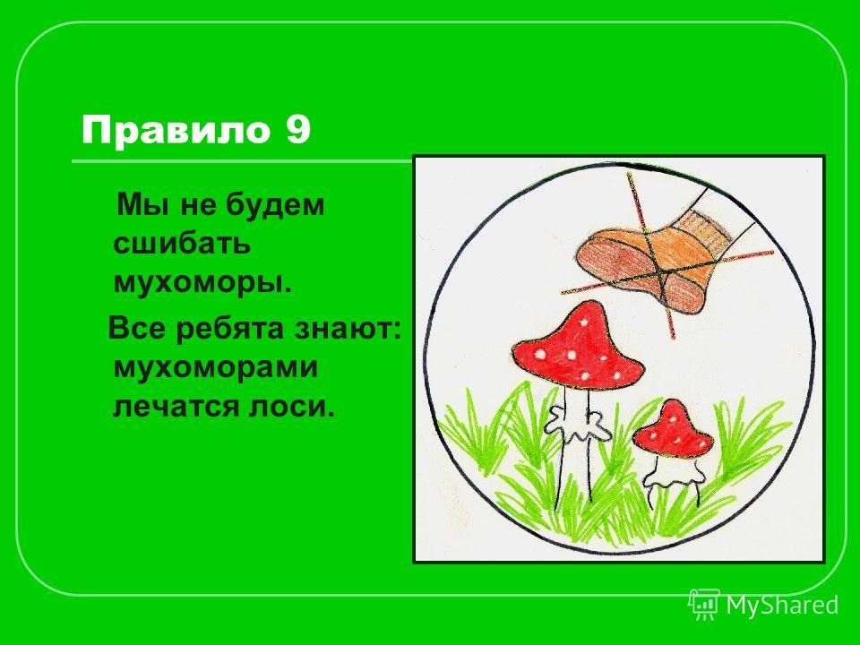 Правило 9 Мы не будем сшибать мухоморы. Все ребята знают: мухоморами лечатся лоси.