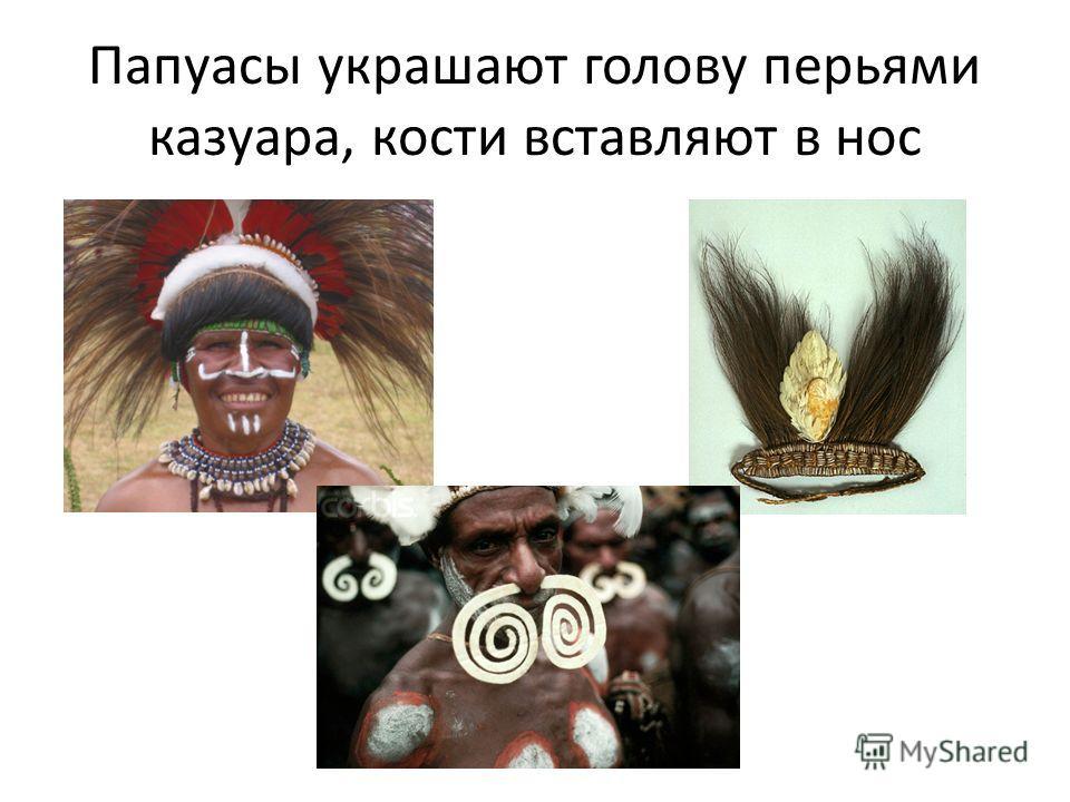 Папуасы украшают голову перьями казуара, кости вставляют в нос