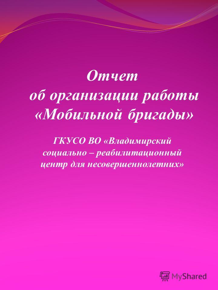 Отчет об организации работы «Мобильной бригады» ГКУСО ВО «Владимирский социально – реабилитационный центр для несовершеннолетних»