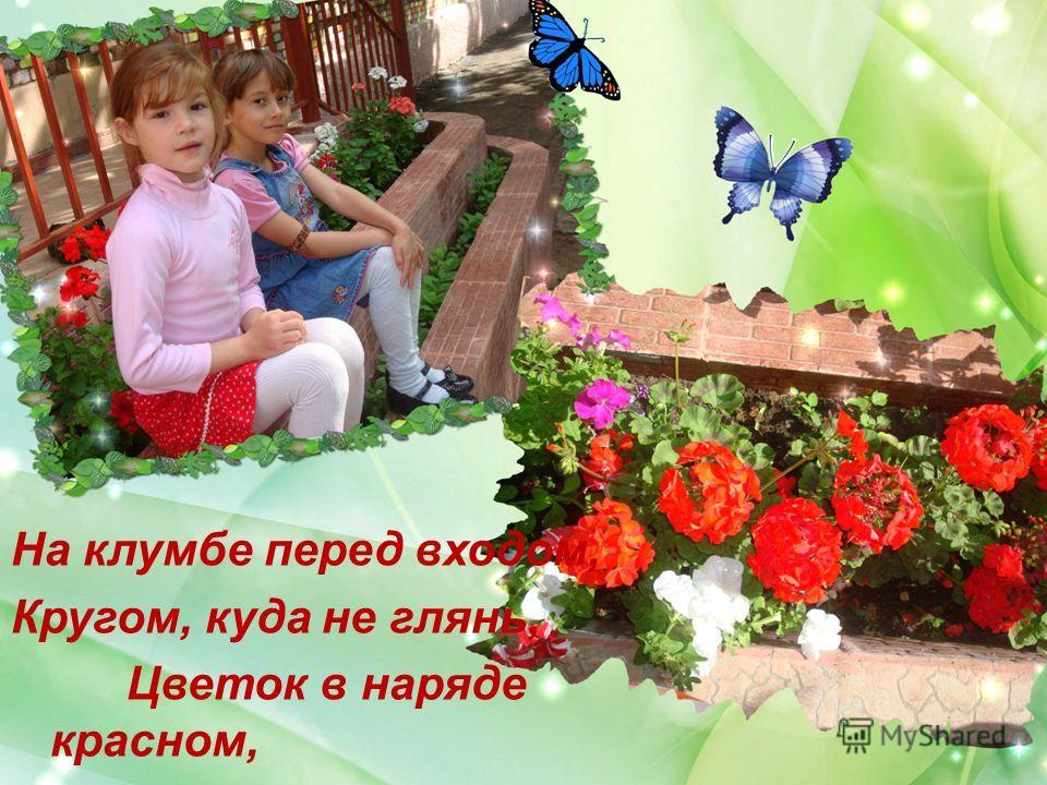 На клумбе перед входом, Кругом, куда не глянь, Цветок в наряде красном, Зовут его герань!