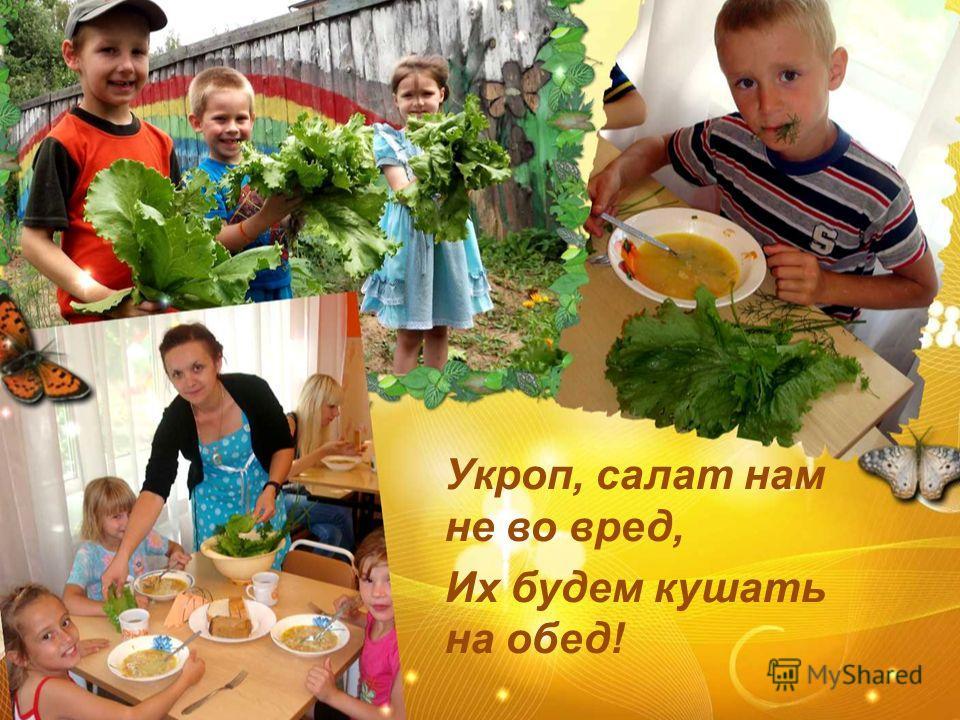 Укроп, салат нам не во вред, Их будем кушать на обед!