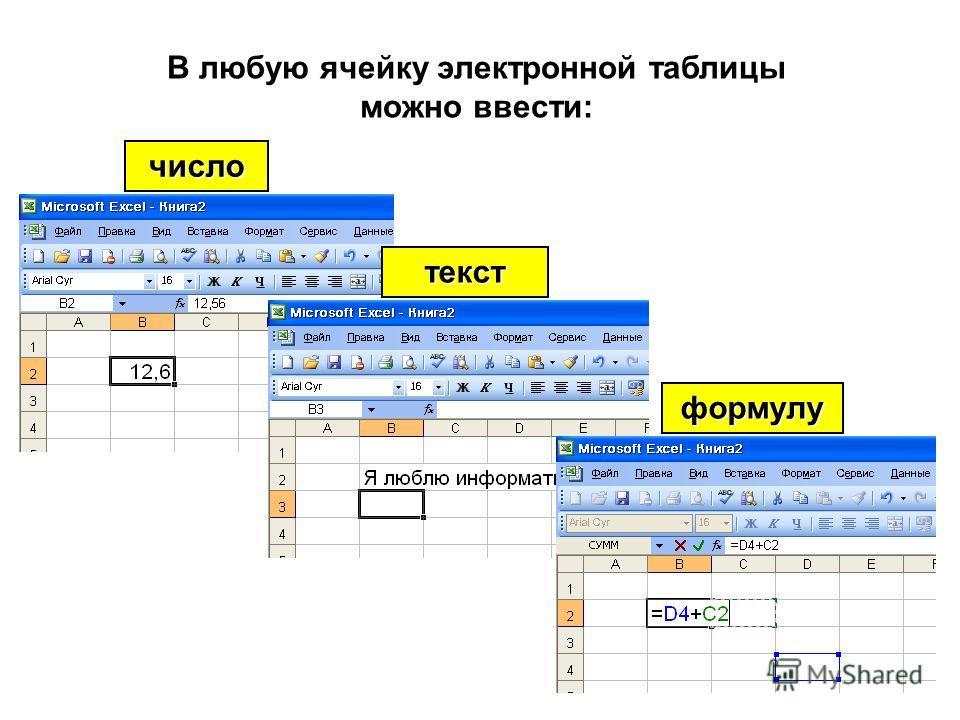 В любую ячейку электронной таблицы можно ввести: число формулу текст