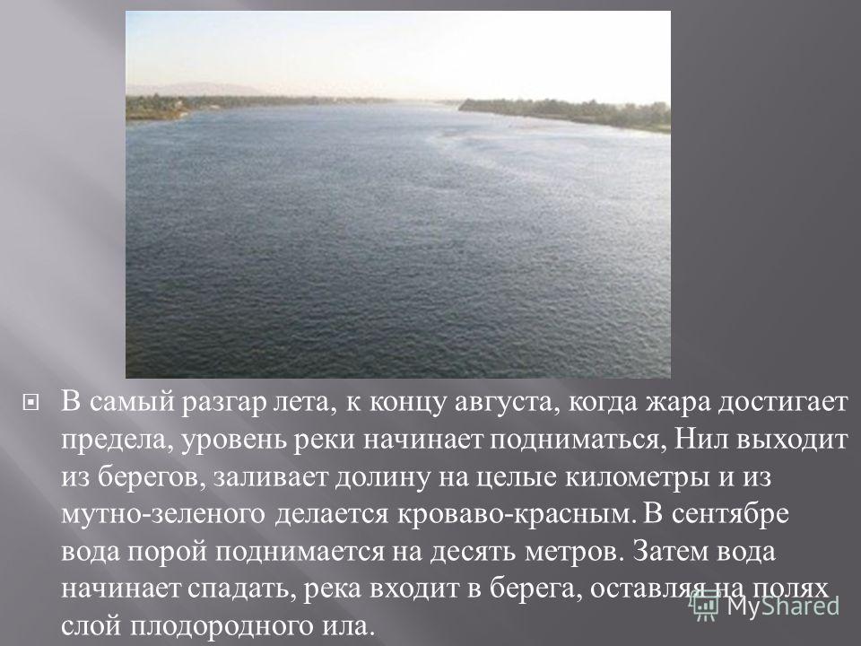 В самый разгар лета, к концу августа, когда жара достигает предела, уровень реки начинает подниматься, Нил выходит из берегов, заливает долину на целые кило  метры и из мутно - зеленого делается кроваво - красным. В сентябре вода порой поднимается н