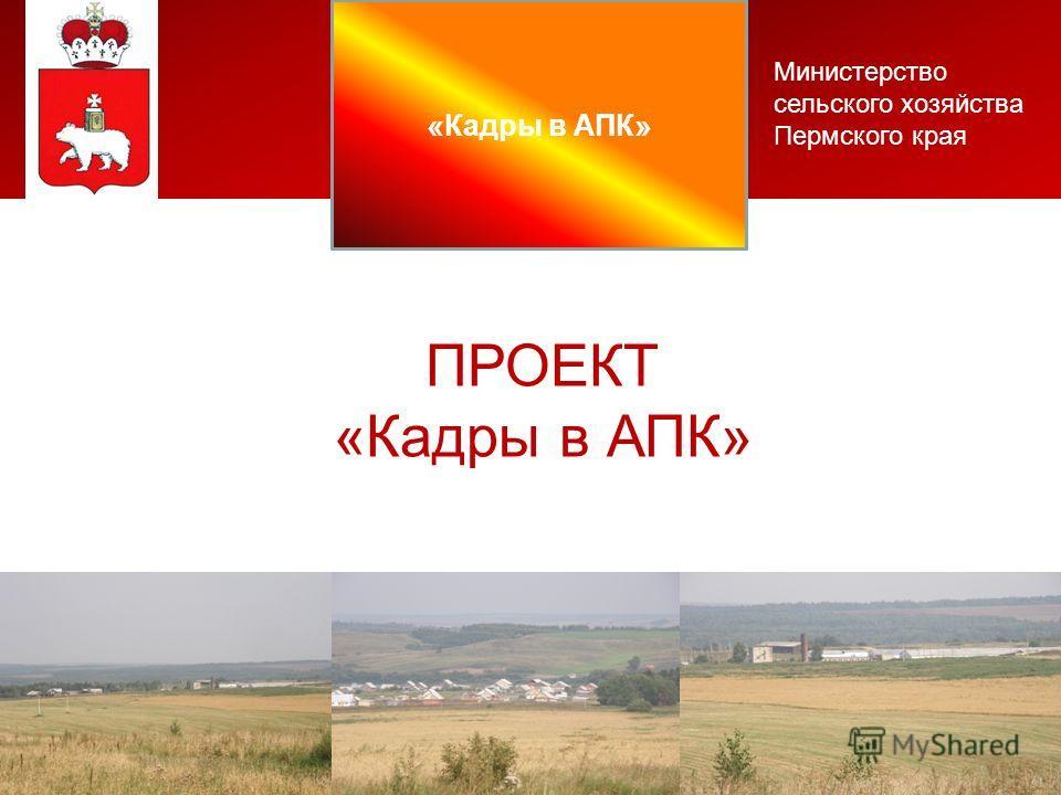 Министерство сельского хозяйства Пермского края ПРОЕКТ «Кадры в АПК»