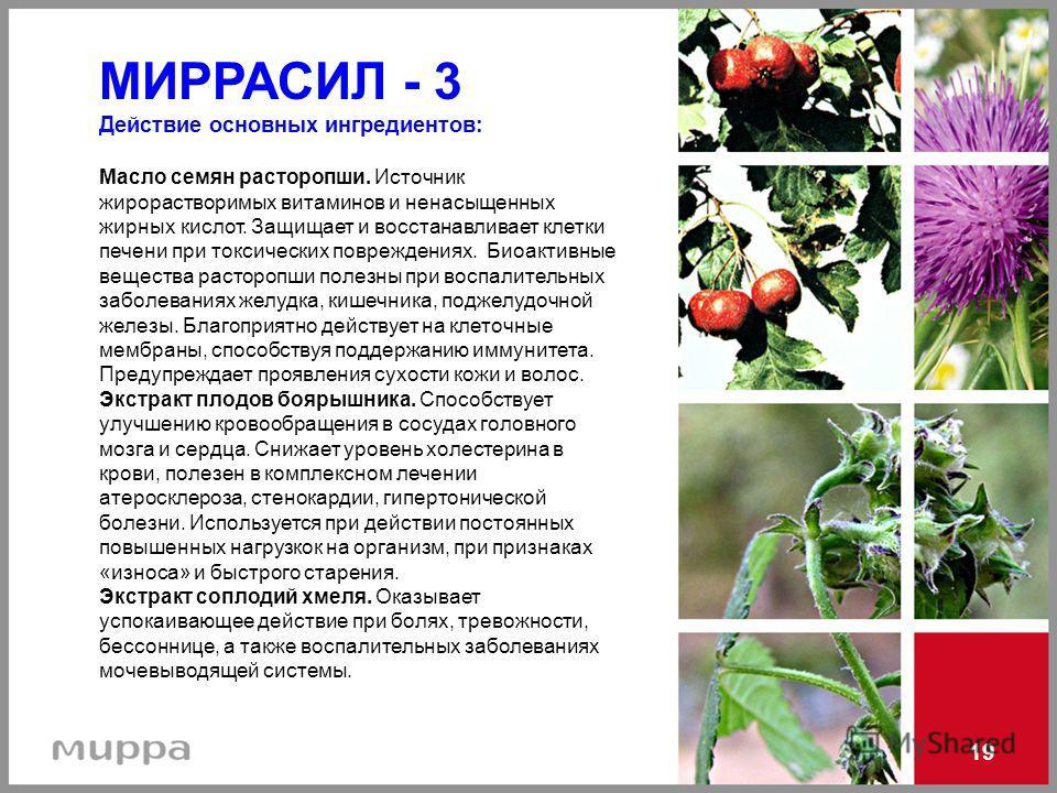 МИРРАСИЛ - 3 Действие основных ингредиентов: Масло семян расторопши. Источник жирорастворимых витаминов и ненасыщенных жирных кислот. Защищает и восстанавливает клетки печени при токсических повреждениях. Биоактивные вещества расторопши полезны при в