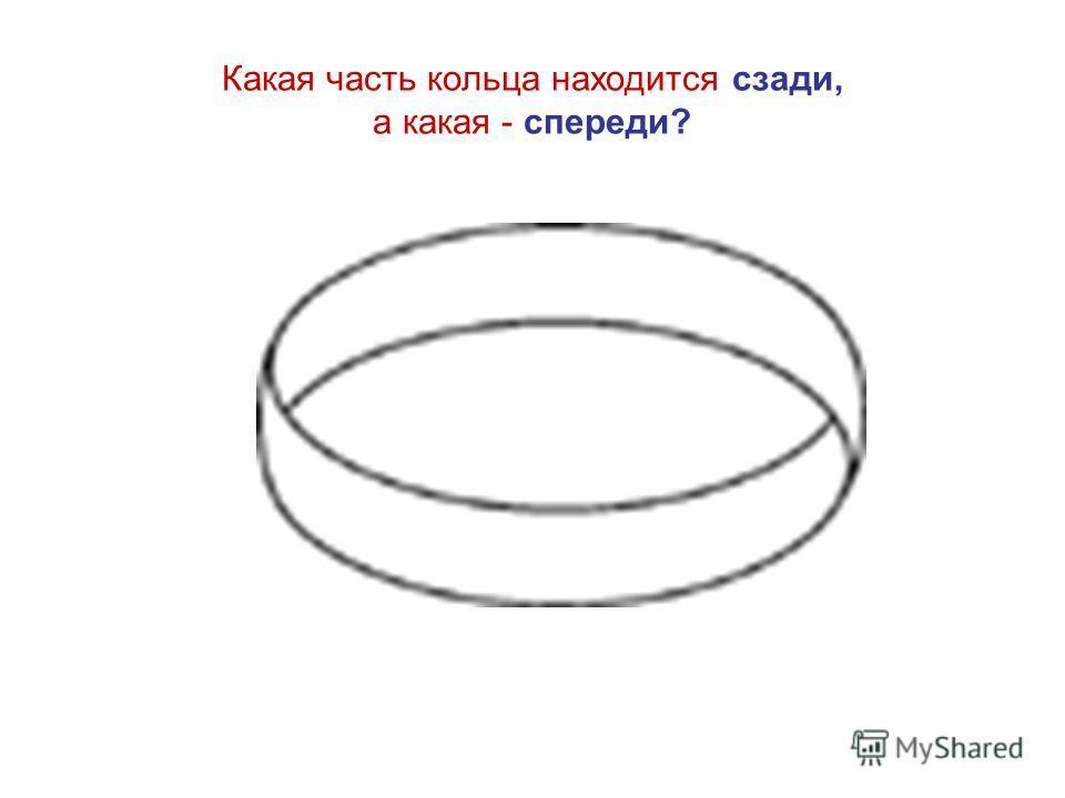 Какая часть кольца находится сзади, а какая - спереди?