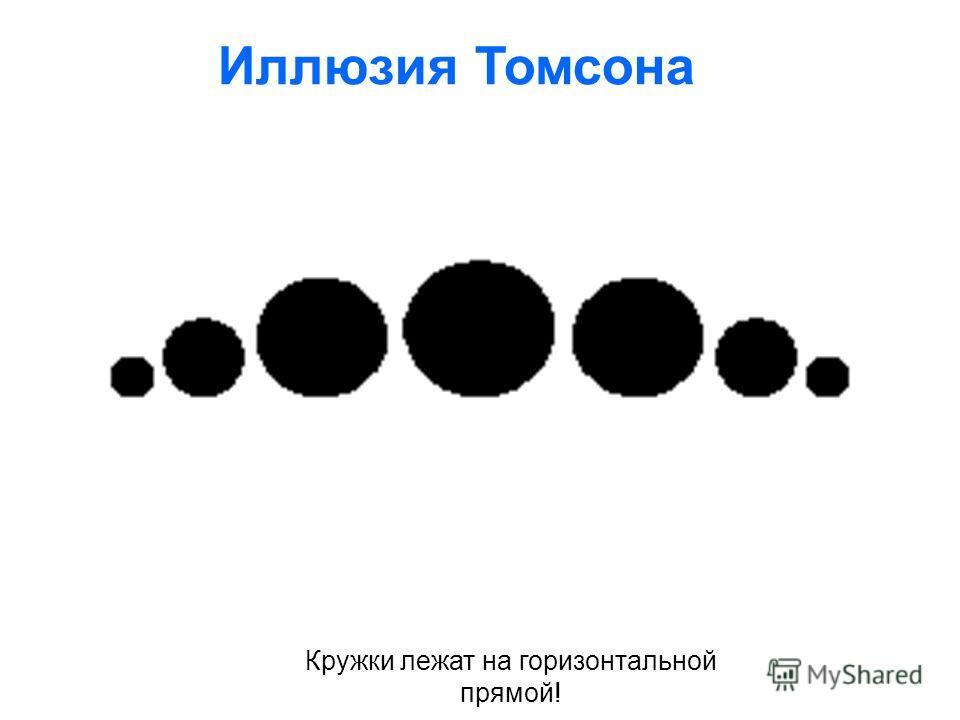 Кружки лежат на горизонтальной прямой! Иллюзия Томсона
