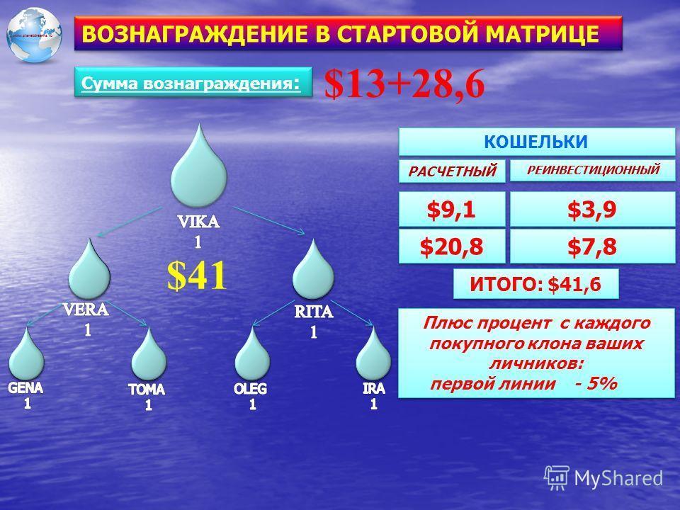 www.planetdreams.ru ВОЗНАГРАЖДЕНИЕ В СТАРТОВОЙ МАТРИЦЕ $41 $3,9 $9,1 $20,8 РЕИНВЕСТИЦИОННЫЙ $7,8 РАСЧЕТНЫЙ КОШЕЛЬКИ ИТОГО: $41,6 Плюс процент с каждого покупного клона ваших личников: первой линии - 5% Плюс процент с каждого покупного клона ваших лич