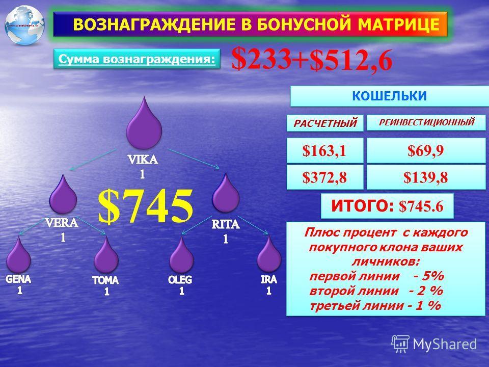 www.planetdreams.ru ВОЗНАГРАЖДЕНИЕ В БОНУСНОЙ МАТРИЦЕ $745 $69,9 $163,1 $372,8 РЕИНВЕС Т ИЦИОННЫЙ $139,8 РАСЧЕТНЫЙ КОШЕЛЬКИ ИТОГО: $745.6 Плюс процент с каждого покупного клона ваших личников: первой линии - 5% второй линии - 2 % третьей линии - 1 %