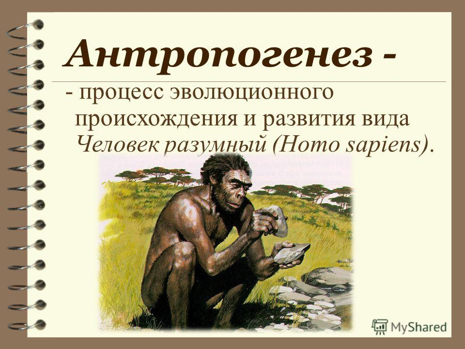 Антропогенез - - процесс эволюционного происхождения и развития вида Человек разумный (Homo sapiens).