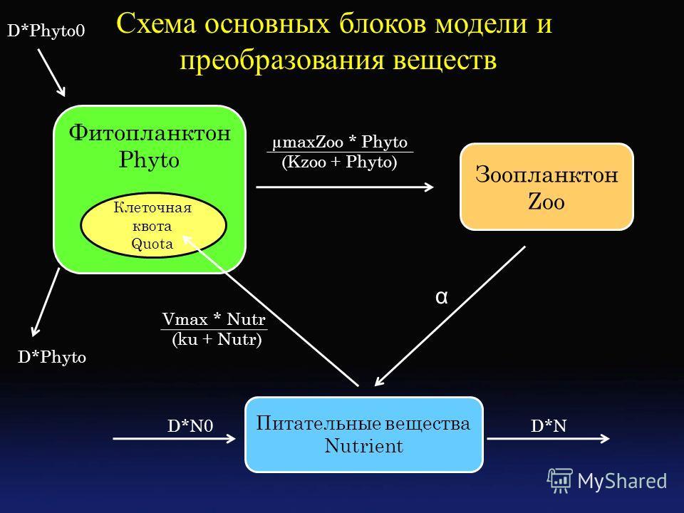 Фитопланктон Phyto Зоопланктон Zoo Питательные вещества Nutrient Клеточная квота Quota α Vmax * Nutr (ku + Nutr) µmaxZoo * Phyto (Kzoo + Phyto) Схема основных блоков модели и преобразования веществ D*ND*N0 D*Phyto D*Phyto0