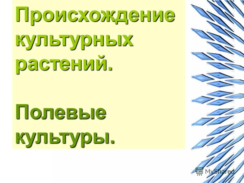Происхождение культурных растений. Полевые культуры.