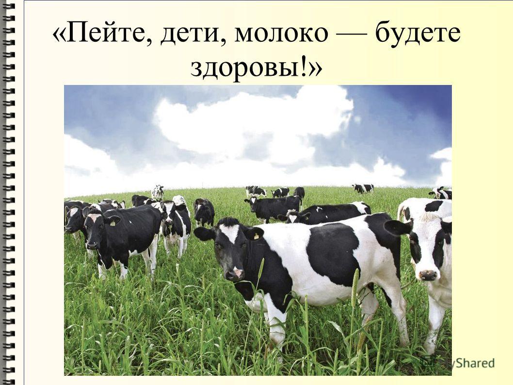 «Пейте, дети, молоко будете здоровы!»