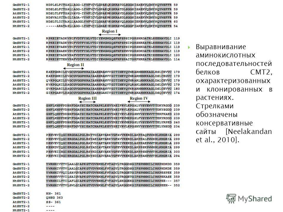 Выравнивание аминокислотных последовательностей белков СМТ2, охарактеризованных и клонированных в растениях. Стрелками обозначены консервативные сайты [Neelakandan et al., 2010].
