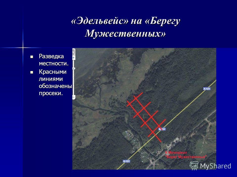 «Эдельвейс» на «Берегу Мужественных» Разведка местности. Разведка местности. Красными линиями обозначены просеки. Красными линиями обозначены просеки.