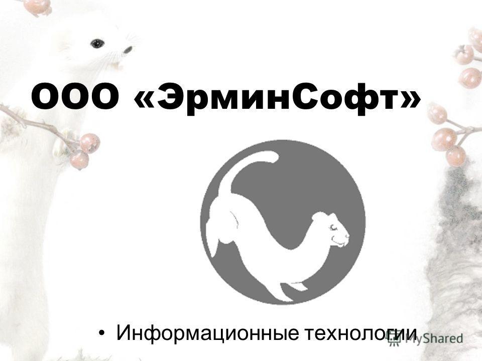 ООО «ЭрминСофт» Информационные технологии