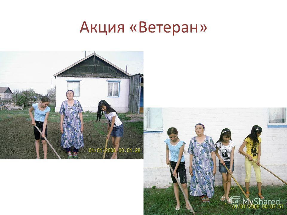Акция «Ветеран»