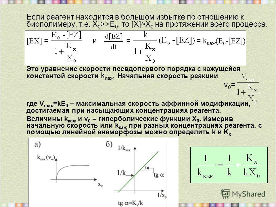 Если реагент находится в большом избытке по отношению к биополимеру, т.е. Х 0 >>Е 0, то [X]Х 0 на протяжении всего процесса. [EX] = и = = k каж (E 0 -[EZ]) Это уравнение скорости псевдопервого порядка с кажущейся константой скорости k каж. Начальная
