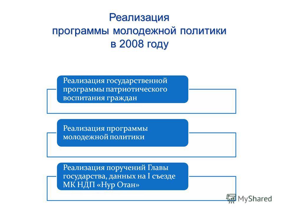 Реализация программы молодежной политики в 2008 году