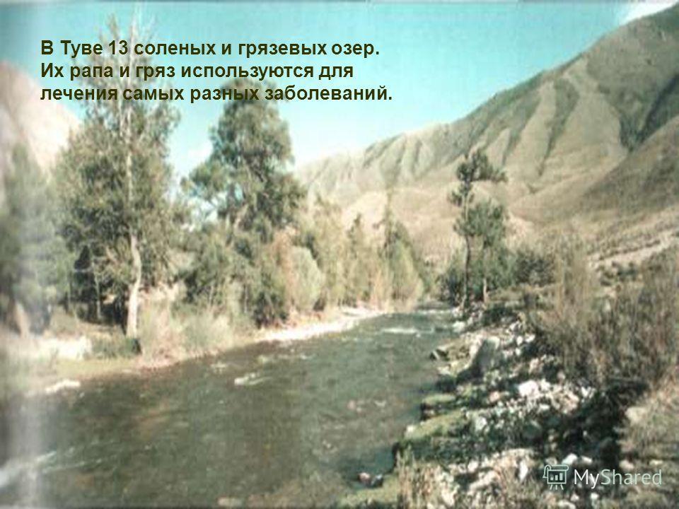 В Туве 13 соленых и грязевых озер. Их рапа и гряз используются для лечения самых разных заболеваний.