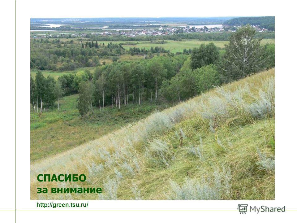 СПАСИБО за внимание http://green.tsu.ru/