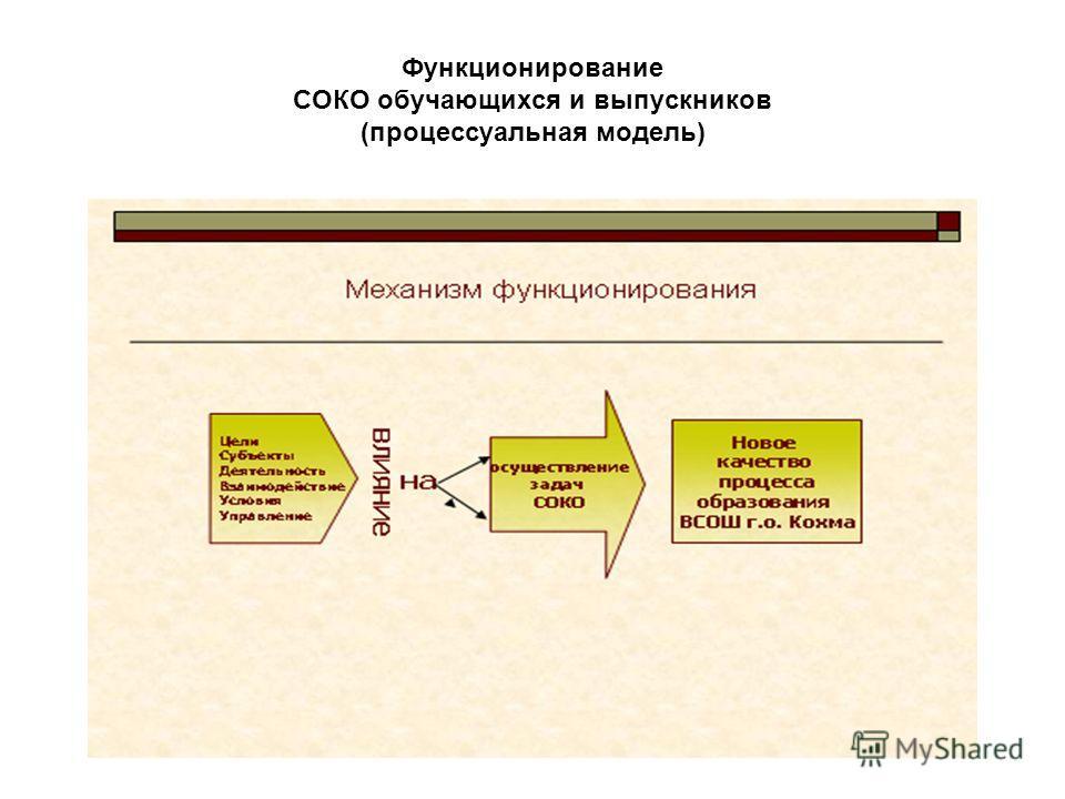 Функционирование СОКО обучающихся и выпускников (процессуальная модель)