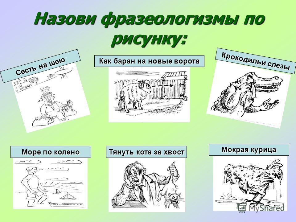 Назови фразеологизмы по рисунку: Сесть на шею Как баран на новые ворота Крокодильи слезы Море по колено Тянуть кота за хвост Мокрая курица