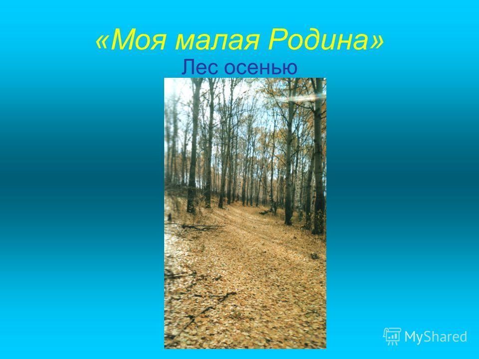 «Моя малая Родина» Лес осенью