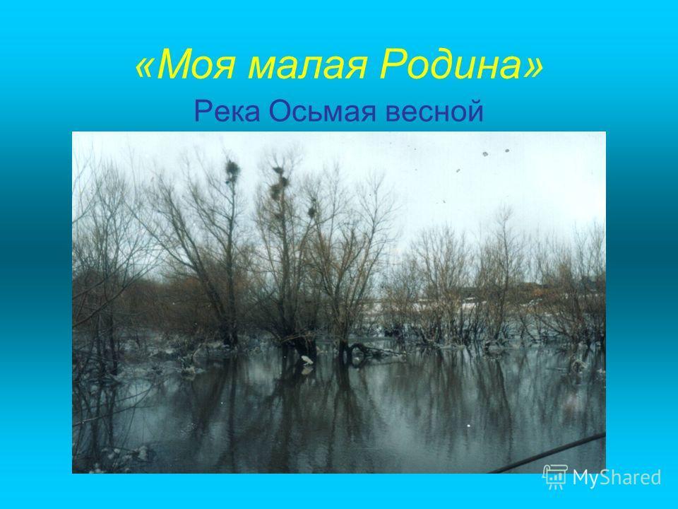«Моя малая Родина» Река Осьмая весной