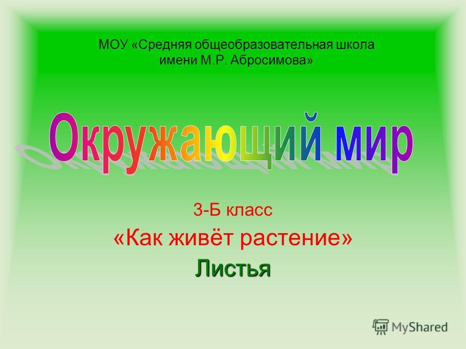 МОУ «Средняя общеобразовательная школа имени М.Р. Абросимова» 3-Б класс «Как живёт растение»Листья