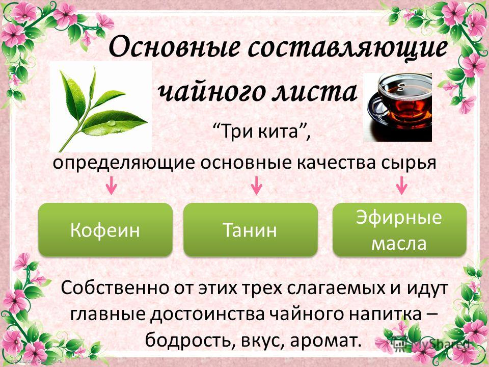 FokinaLida.75@mail.ru Основные составляющие чайного листа Три кита, определяющие основные качества сырья Собственно от этих трех слагаемых и идут главные достоинства чайного напитка – бодрость, вкус, аромат. Танин Эфирные масла Эфирные масла Кофеин