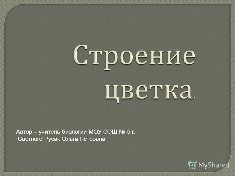 Автор – учитель биологии МОУ СОШ 5 г. Светлого Русак Ольга Петровна