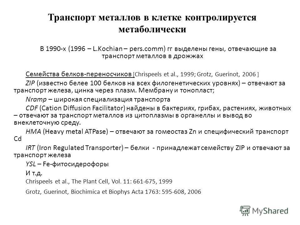 Транспорт металлов в клетке контролируется метаболически В 1990-х (1996 – L.Kochian – pers.comm) гг выделены гены, отвечающие за транспорт металлов в дрожжах Семейства белков-переносчиков [ Сhrispeels et al., 1999; Grotz, Guerinot, 2006 ] ZIP (извест