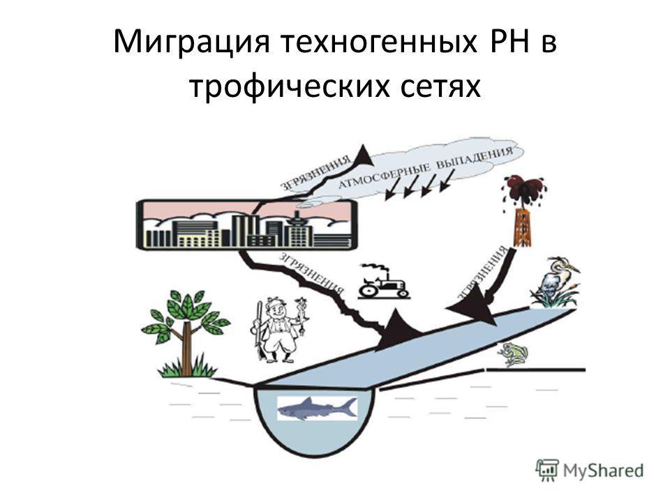 Миграция техногенных РН в трофических сетях
