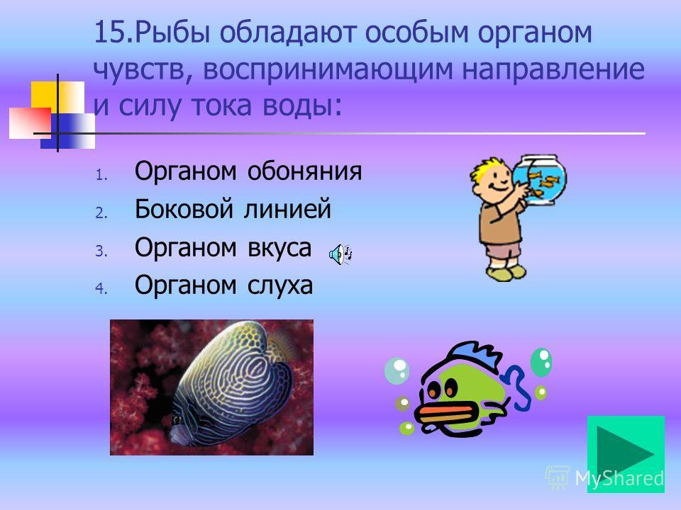 14. При развитии с полным превращением насекомое проходит следующие стадии: 1. Яйцо- взрослое насекомое 2. Яйцо-личинка- куколка 3. Яйцо- личинка- куколка- взрослое насекомое 4. Яйцо- личинка- взрослое насекомое