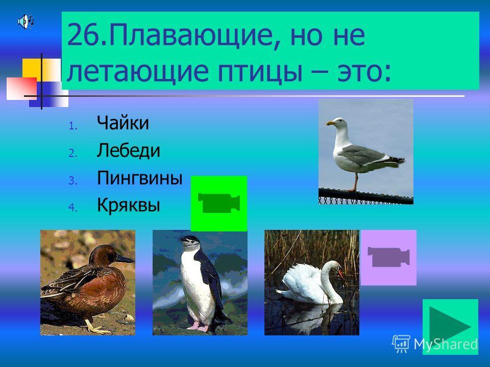 25.К летающим птицам относят: 1. Журавля 2. Киви 3. Страуса 4. Пингвина