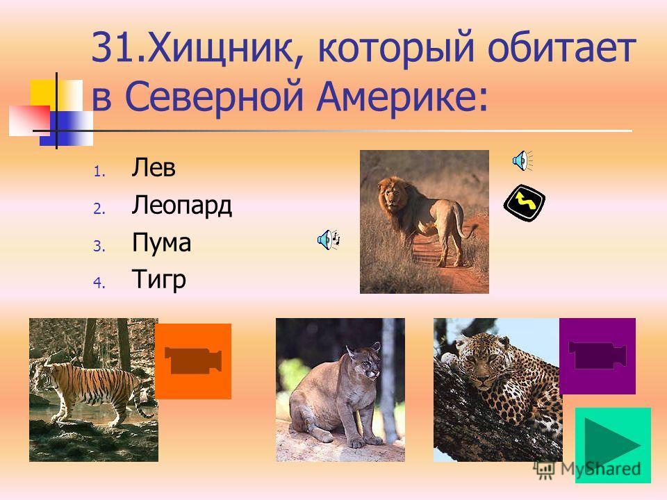 30. Макаки, шимпанзе, павианы, гориллы относятся к: 1. Узконосым обезьянам 2. Человекообразным обезьянам 3. Широконосым обезьянам 4. Цепкохвостым обезьянам