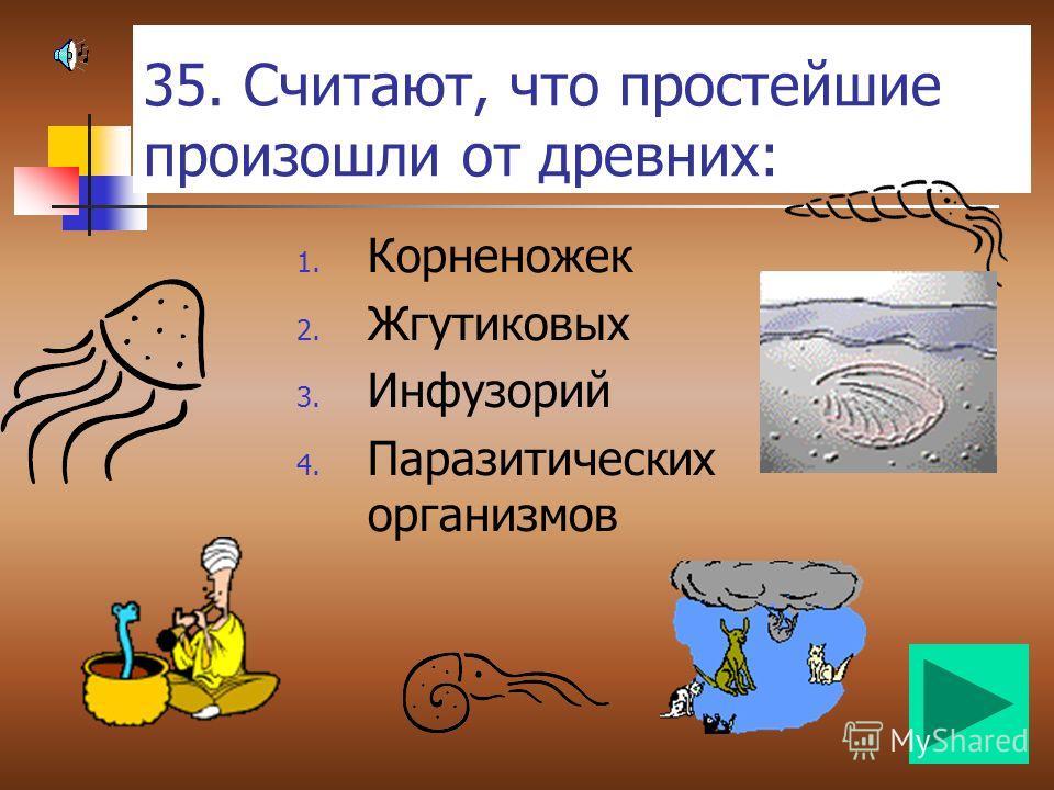 34. Кто из грызунов наделён способностью смеяться: 1. Крысы 2. Мыши 3. Белки 4. Зайцы