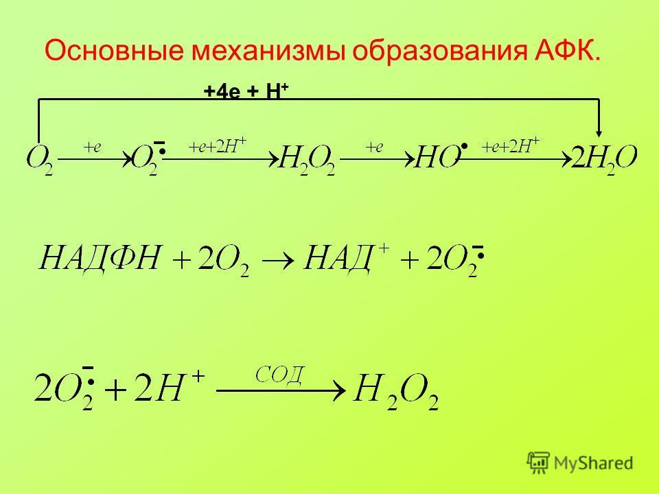 Основные механизмы образования АФК. +4e + H +