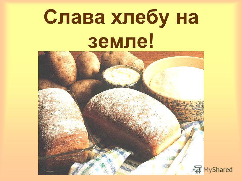 Слава хлебу на земле!