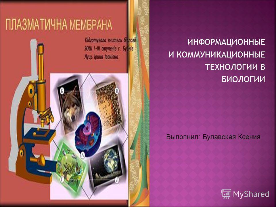 ИНФОРМАЦИОННЫЕ И КОММУНИКАЦИОННЫЕ ТЕХНОЛОГИИ В БИОЛОГИИ Выполнил: Булавская Ксения