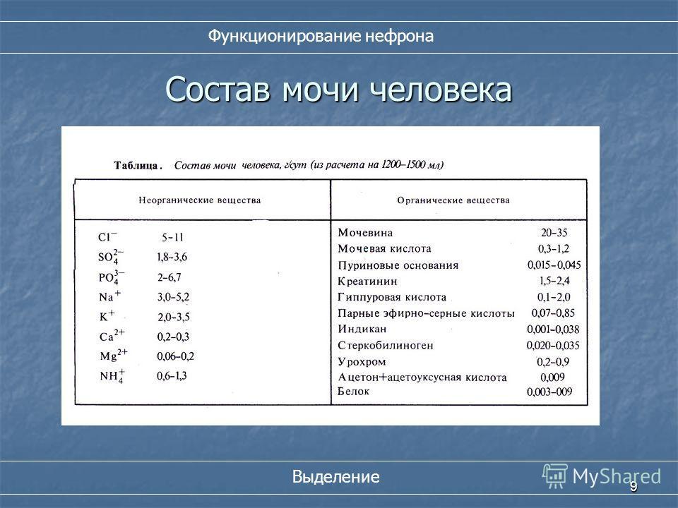 9 Состав мочи человека Функционирование нефрона Выделение