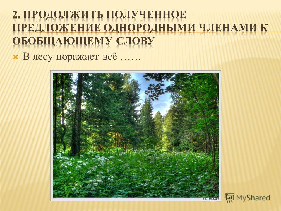 В лесу поражает всё ……