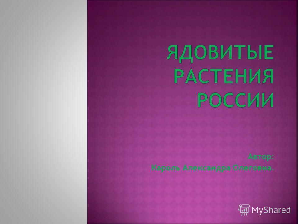 Автор: Кароль Александра Олеговна.