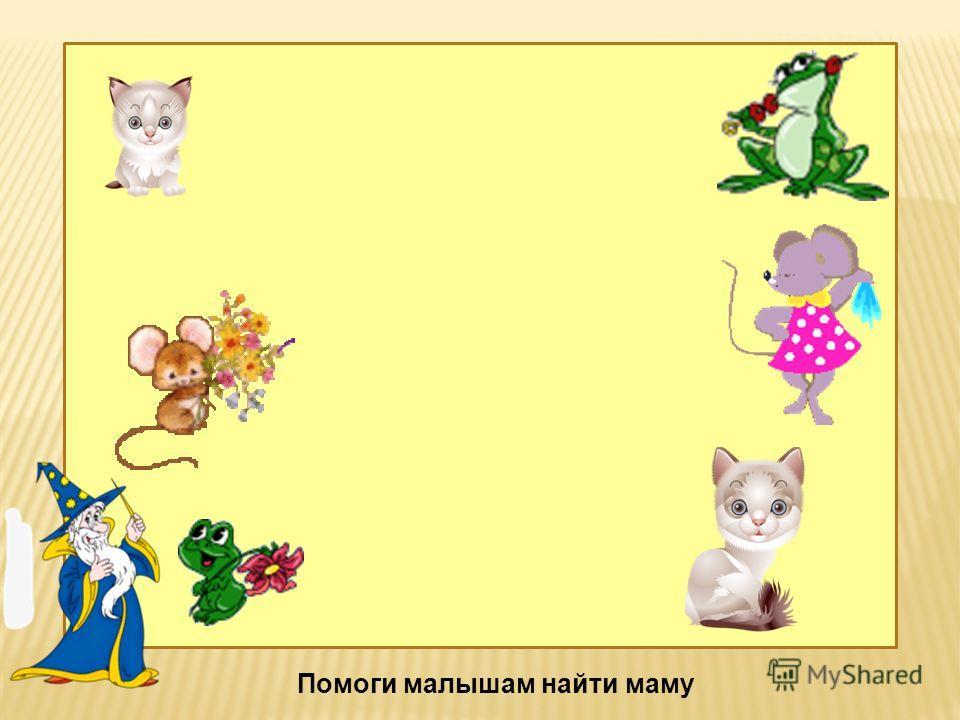 1, 2, 5 Детёныши животных