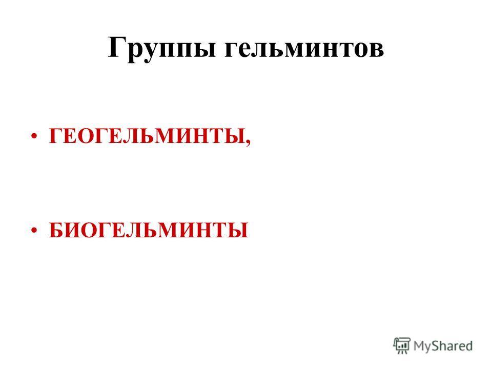 Группы гельминтов ГЕОГЕЛЬМИНТЫ, БИОГЕЛЬМИНТЫ